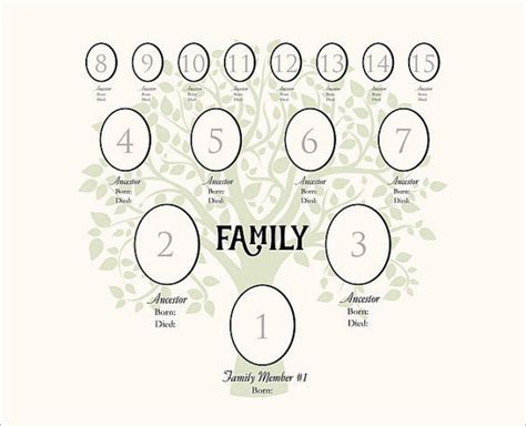 4 Generation Family Tree Template 12 Free Sle 12 Generation Family Tree Template Templates Data