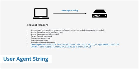 agent user string support keycdn