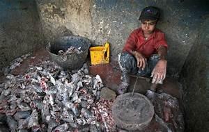 pakistan | News on Modern Day Slavery