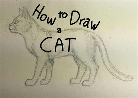 draw  cat warriors amino