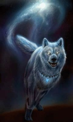Download Animated 240x400 Wolf Cell Phone Wallpaper