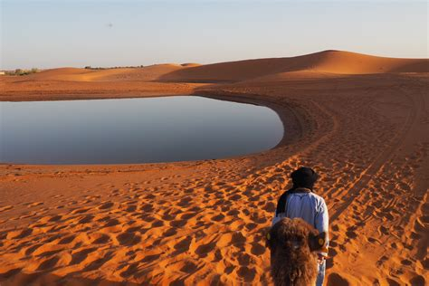 Morocco Camping Under The Stars In The Sahara Desert