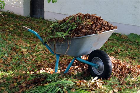ways  remove garden waste  waste removals
