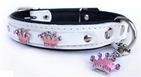 hundehalsband halsband hunde hunde halsband