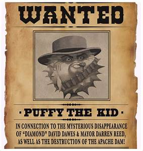 Wanted poster template 54 free printable word psd illustration indesign excel pub pdf for Sample wanted posters
