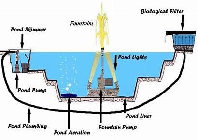 Water Fountain Pond Basics Lights