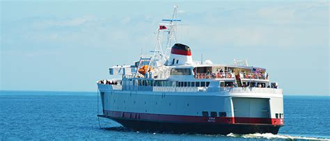 Car Ferry From To Angeles by Whale Angeles Or Eagle Wing Tours
