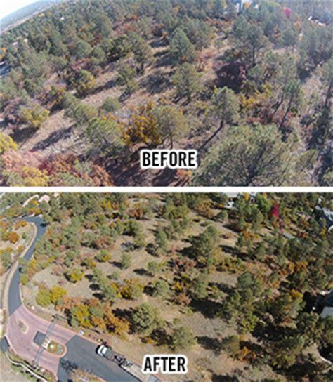 colorado springs tree service landscape  colorado