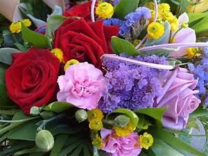 Schnittblumen Länger Frisch : schnittblumen l nger frisch halten blumenpapa ~ Watch28wear.com Haus und Dekorationen
