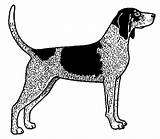 Tick Coloring Hound Dog Template sketch template