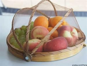 Wie Wird Man Obstfliegen Los : fruchtfliegen beseitigen die besten hausmittel gegen obstfliegen ~ Orissabook.com Haus und Dekorationen
