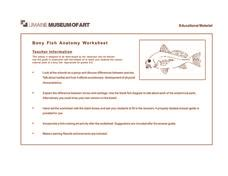 bony fish anatomy worksheet 2nd 5th grade worksheet lesson planet