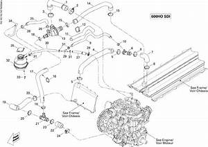 Wiring Diagram For 1999 Ski Doo Mxz 600