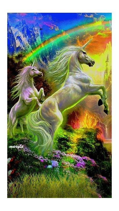 Gifs Unicorns Unicorn Fantasy Dragons Magical Pegasus