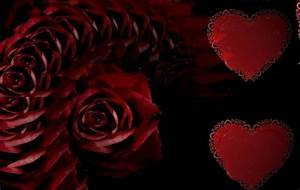 roses hearts. i love you by analovecatdog on DeviantArt