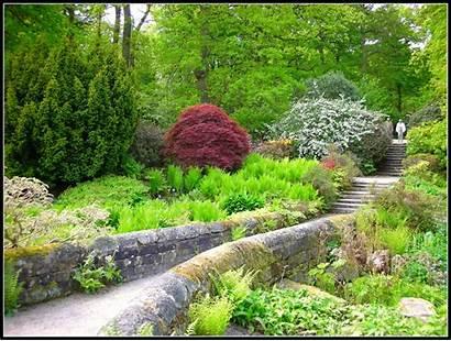 Harlow Carr Garden Rhs Karen Gardens Landscape