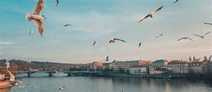 Städtereisen Nach Prag : kurztrip nach prag prag st dtereisen ~ Watch28wear.com Haus und Dekorationen