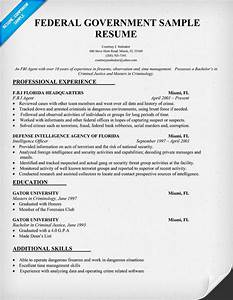 cv sample government With federal style resume