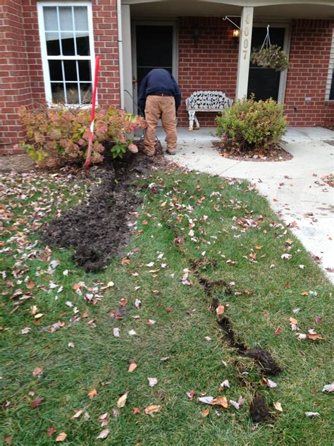 backyard drainage solutions drainage solutions gallery