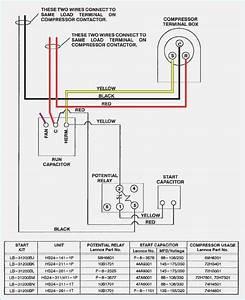 Compressor Start Capacitor Wiring Diagram  U2013 Vivresaville Com