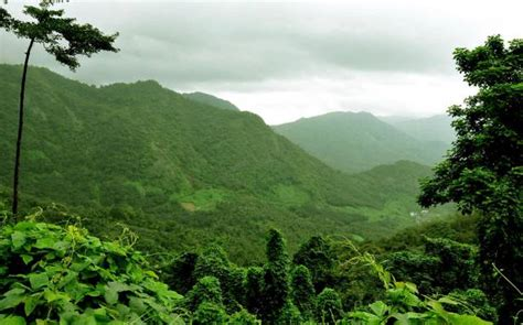 western ghats kasturirangan report will spell disaster warn ecologists