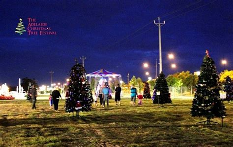 best 28 real christmas trees adelaide a feel for real