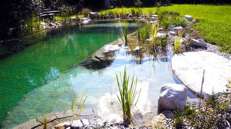 schwimmteich oder pool schwimmteich oder naturpool outdoor living in 2018 pond swimming pools