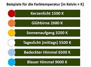 Wieviel Kelvin Hat Tageslicht : leuchtstoffr hren als pflanzenlampe info vergleich ~ Yasmunasinghe.com Haus und Dekorationen