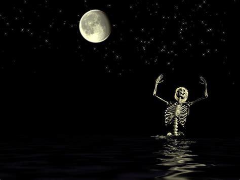 Funny Skeleton - Wallpaper #30736