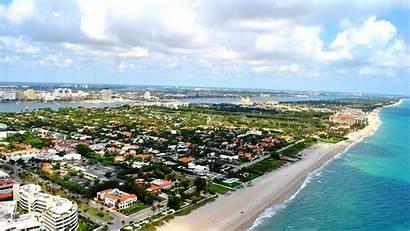 Palm Florida Wikipedia