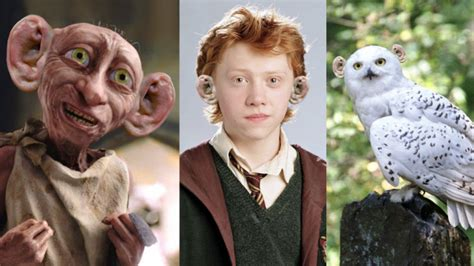 heres   favourite harry potter characters