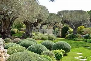 Les Plus Beaux Arbres Pour Le Jardin : nouveau guide d co jardin 20 jardins d 39 exception les ~ Premium-room.com Idées de Décoration