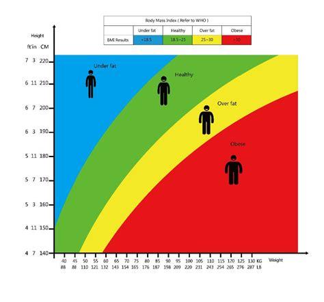 bmi calculator  bmi chart  find  body mass index