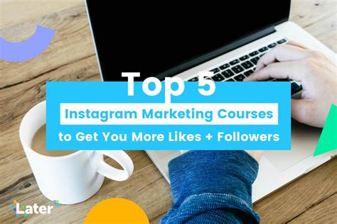 best marketing courses top 5 instagram marketing courses to get you more likes