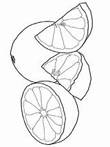 Coloring Grapefruit Pages Printable Fruits Template Recommended Colors Favorite sketch template