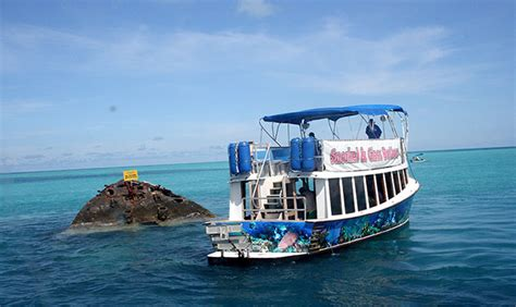 reef comber captain kirks coral reef adventures bermuda