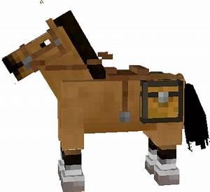 Horse Nova Skin