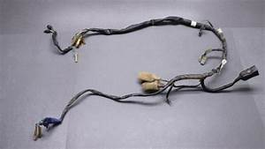 1986 Honda Trx 125 Fourtrax  1985  Engine Wiring Harness