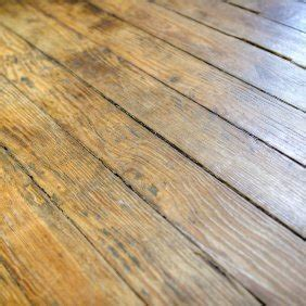 Fixing Squeaky Floors Through Carpet by Fixing Squeaky Hardwood Floors Thriftyfun