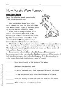 how fossils were formed 3rd 5th grade worksheet lesson