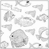 Aquarium Drawing Coloring Printable Getdrawings Ocean sketch template