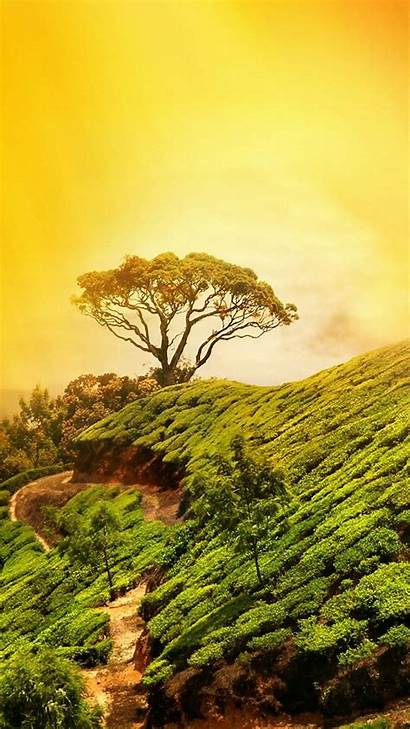Nature Wallpapers Iphone Resolution 3d February Android