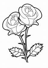 Flower Snowdrop Drawing Coloring Bed Getdrawings Bud sketch template