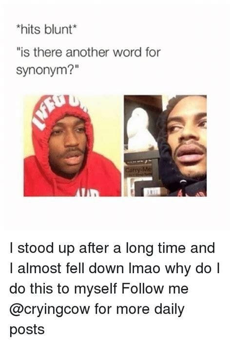 memes   word  synonym