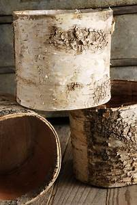 Birch, Bark, Covered, 6, U0026quot, Planters, Pot, W, Liner
