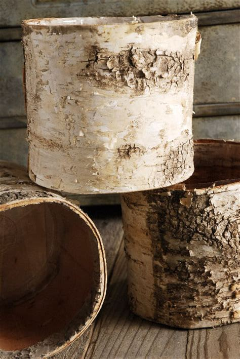 birch bark covered  planters pot wliner