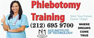 Category ace career for Free phlebotomy training nyc