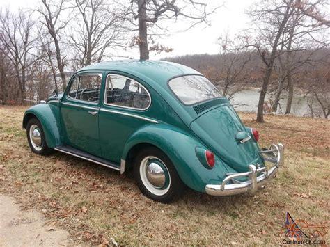 volkswagen beetle 1965 1965 vw beetle bug classic volkswagen