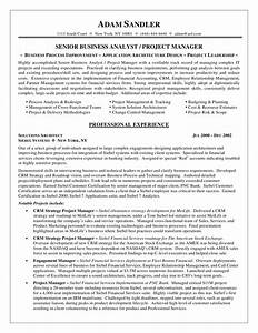 business analyst resume sample career diy pinterest With crm business analyst resume