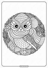 Coloring Owl Printable Pdf Winter sketch template